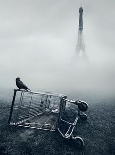 Paris by Mikko Lagerstedt  (this feels strangely so Edgar Allen Poe to me)