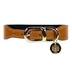 H & R Natural Tan & Gold Dog Collar | Shop Online - Kaylo Luxury Pet Boutique