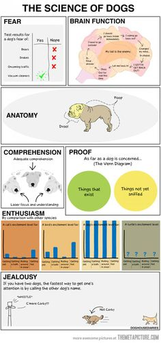 Too funny! Science of a dog. Need to find poster of this!