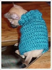 Image detail for -Dog Sweater Crochet Patterns | Dog Sweaters and Free Dog Sweater ...