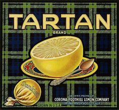Tartan Grapefruit Crate Label Corona, CA Vintage Diy, Motif Vintage, Vintage Labels, Printable Vintage, Vintage Packaging, Vintage Holiday, Vintage Bags, Vintage Designs, Free Printable