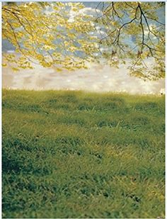 Laeacco Grassland and Nature View 3x5ft Vinyl Photography Backdrop 1*1.5m Photo Background Studio Props Laeacco http://www.amazon.com/dp/B018QG4D7A/ref=cm_sw_r_pi_dp_Ni6zwb19B30GZ