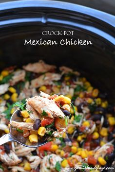 Crock-Pot Mexican Chicken - Garnish & Glaze What is appropriate business entertaining? Crock Pot Tacos, Crock Pot Slow Cooker, Crock Pot Cooking, Slow Cooker Recipes, Cooking Recipes, Crockpot Chicken Tacos, Mexican Chicken Recipes, Mexican Dishes, Slow Cooker Mexican Chicken