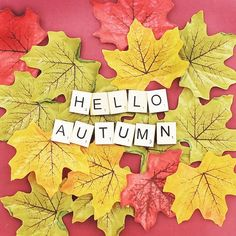 Hello Autumn #thewor
