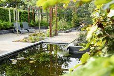 Narrow modern garden -4