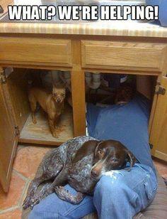 plumbing helpers