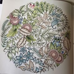 Joanna Basford Enchanted Coloring Books Mandala Forest Maryland Forests Owls Colouring In Livros