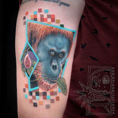 Orang-utan for Ryan. Half healed. Thanks man!  Oct 2016  #chrisrigonitattooer #chrisrigoni #holdfasttattoo #perth #tattoo #orangutan #monkey #tattooartistmagazine #tattooistartmag #uktta #prophetsandpoets  #superb_tattoo #tattooculturemagazine  #support_good_tattooing #skinartmag #tattoorevuemag #Equilattera #inkjunkeyz #tattoosnob #hustlebutter #inkmachines #fusionink #intenzeink #tattrx #inkedmag #tattoo_art_worldwide #tattoodo #backintime #thebesttattooartists #tattooselection