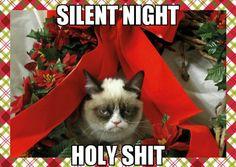 My grumpy cat meme