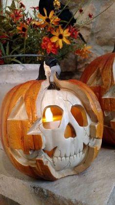 Choosing the Fairy Halloween Costume Halloween Tags, Halloween Prop, Halloween Skeleton Decorations, Fairy Halloween Costumes, Halloween Party Supplies, Halloween Skeletons, Halloween Snacks, Halloween Skull, Halloween Horror
