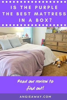 We jumped onboard the mattress-by-mail train to see if the Purple mattress really is as squishy and wonderful as everyone says. Read on for our Purple mattress review and a look at how you can order one for yourself.