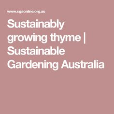 Sustainably growing thyme | Sustainable Gardening Australia