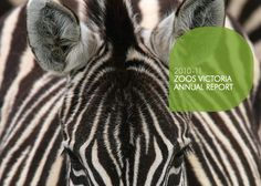 Zoos Victoria Annual Report 2010 - 2011
