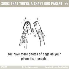 http://lastlemon.com/dogs/dog130/