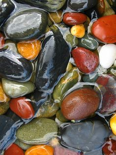 River Rocks still in the river water.