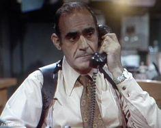 Abe vigoda as fish on tv 39 s barney miller memorable for Barney miller fish