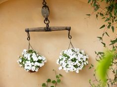 Good Patio Plants Garden Ideas Ideas For 2019 Cheap Patio Furniture, Patio Furniture Cushions, Patio Fence, Diy Patio, Small Patio Ideas Townhouse, Cottage Patio, Small Outdoor Patios, Outdoor Patio Umbrellas, Patio Layout