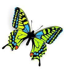 butterfly clip art - Google Search