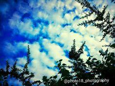 Cielo: quinta de Junin Buenos Aires 2012 #juninbuenosaires #buenosaires #sky #fotografia #concursodefotografia #fotoamateur #fotoaficionado #participaygana #fotografos #fotografia #concurso #arte #photographers #imagen