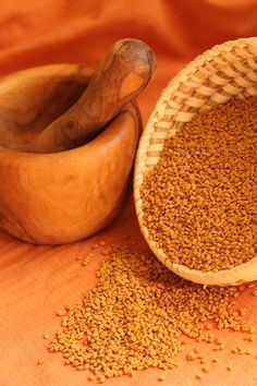 Fenugreek tea is one of my favorite remedies for coughs, especially the dry hacking variety that doesn't produce much phlegm | Chestnut School of Herbal Medicine