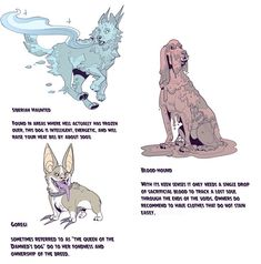 """""""It's this spooky month to remind everyone that adopting a hellhound is not just for life but for afterlife as well! I made an information chart so everyone can know there good (?) boy before make an informed decision! Know your Hellhounds! Mythical Creatures Art, Mythological Creatures, Magical Creatures, Fantasy Creatures, Dark Creatures, Alien Concept Art, Creature Concept Art, Creature Design, Creature Drawings"""