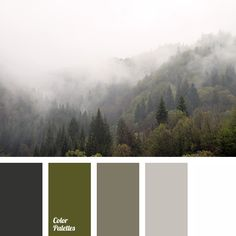 color combination for winter, color of fog in mountains, color of winter fog, colors of misty woods, dark green color, fog colors, gray color, olive green color