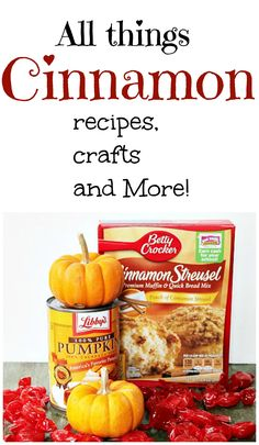 All things Cinnamon, recipes, crafts and more. #debbiedoos
