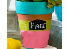 Stripes with Label Clay Pot with FolkArt Paint made with Handmade Charlotte Peel & Stick stencils available to buy in-store at major craft retailers #crafts #plaidcrafts #diy
