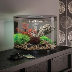 Aquariums & Tanks Honest Biorb Bubble Tube Cleaner