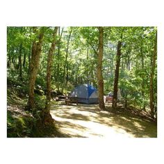 Tent camping at Sweetwater Forest-Tents only-No RVs Allowed Picture of... ❤ liked on Polyvore featuring backgrounds, camping, places, home and pictures