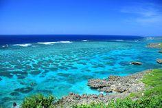 Miyakozima Island!! The south part of Japan. 宮古島 珊瑚礁02