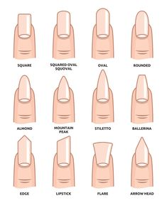 Illustration of Different nail shapes Fingernails fashion Trends vector art clipart and stock vectors. Image The post Illustration of Different nail shapes Fingernails fashion Trends vector art c appeared first on nageldesign. Stylish Nails, Trendy Nails, Cute Nails, My Nails, Grow Nails, Summer Acrylic Nails, Best Acrylic Nails, Spring Nails, Matte Nail Art