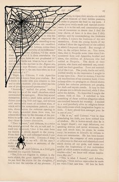 Recycled dictionary art print - spider web