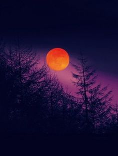 Lindo atardecer Art in Purple Orange Bl Orange Moon, Orange And Purple, Shades Of Purple, Red Moon, Blood Orange, Vida Natural, Orange Aesthetic, Aesthetic Dark, Beautiful Moon