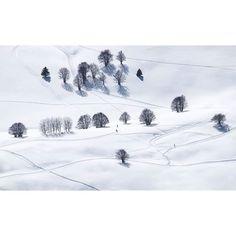 Arrow . . . #alps #moodygrams#roamtheplanet#ig_italia #mountainstones#earthfocus #megapixelcz#discoverearth#wildlifeplanet#ourplanetdaily #dnescestujem #lensbible#awesomeearth#naturegeography #awesome_earthpix#thegreatoutdoors#destinationearth #nakedplanet#BBCearth#earthcapture#lonelyplanet #igerscz #fujifilmcz #_fujilove_ #montebondone #peakdesignnacestach #fujistask  @fujifilmcz @fujistask @peakdesignczsk #kvalitnifotky