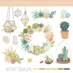 Wedding Succulents Floral clipart, Digital Wreath, Floral Frames, Flowers, Terrariums Clip art scrapbooking, wedding invitations, cactus