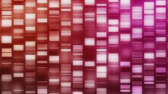 Searching For The Hidden Health Heroes Whose DNA Prevents Disease