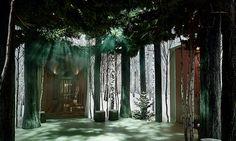 Jony Ive a Marc Newson vytvořili v hotelu vánoční les
