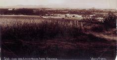 La región más transparente del aire, 1905 circa.