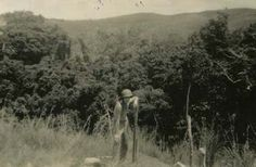 A Marine on a ridge, Guadalcanal-1942 The thick jungle and rugged terrain is evident in this photo.