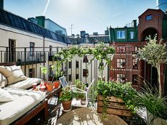 Scandinavian summer balcony with green plants and vegetable plants | Stylish ideas and inspiration for the balcony