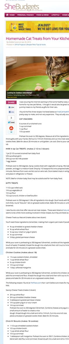 Homemade Cat Treats from Your Kitchen