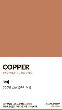 Flat Color Palette, Vintage Colour Palette, Colour Pallette, Pantone Colour Palettes, Pantone Color, Sepia Color, Mauve Color, Pantone 2020, Colour Board