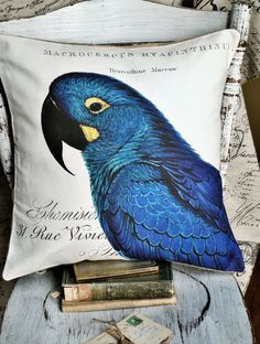 Cotton Pillow Cover Blue MaccawStunning by JolieMarche on Etsy, $35.00