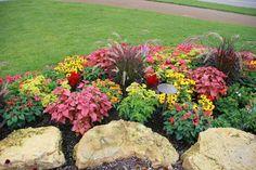 Cómo diseñar un jardín de flores - Jardinería