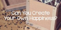 Can You Create Your Own Happiness?
