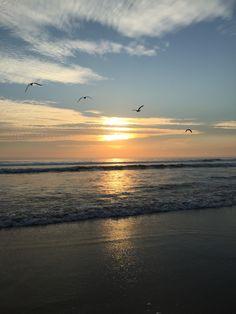 Praia - Costa da Caparica