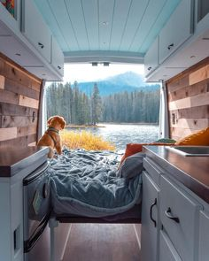 This is the cutest sprinter van conversion I've seen! Great colors for the design and a really simple layout with just enough space for a kitchen, bathroom and bedroom area. It has nice organization and lots of storage space. I want to build a camper van like this and try out #vanlife