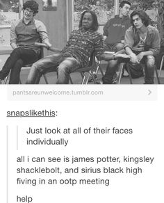 "Oh look, and there's Lupin in the back like, ""I swear Prof. McGonagall, we're responsible adults now."""