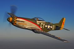 "North American P-51 Mustang fighter ""Gunfighter""."
